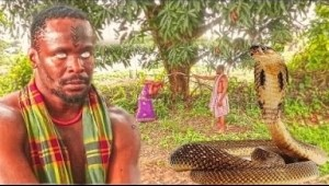 Video: THE PYTHON FROM THE GODS  - Latest Nigerian Nollywood Movies
